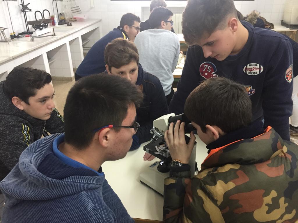 Los alumnos de 3º de ESO realizan prácticas de laboratorio en la asignatura de Biología