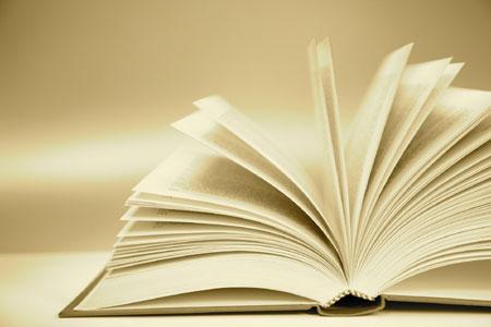 Lecturas recomendadas desde Torrealba para este verano